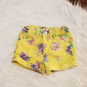 Jordache jean shorts